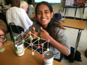 Gum Drop Bridge Building